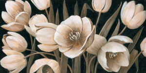 Sepia Tulips by Peter McGowan
