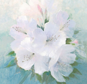 Soft White Florals by Peter McGowan