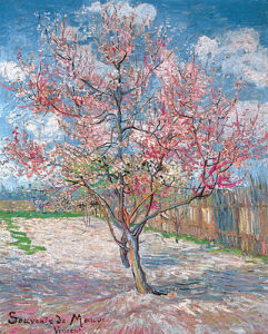 Bluhender Peach Tree, 1888 by Vincent Van Gogh