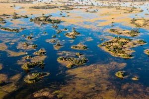 Aerial view of Okavango Delta, Botswana by Sergio Pitamitz