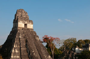 Temple I (Temple of the Giant Jaguar), Tikal mayan archaeological site, Guatemala by Sergio Pitamitz