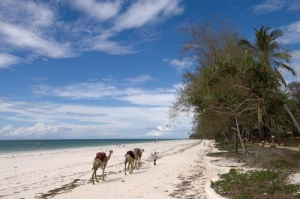 Diani Beach near Mombasa, Kenya by Sergio Pitamitz