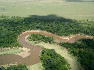Mara River, Masai Mara National Reserve, Kenya by Sergio Pitamitz