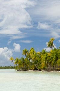 Blue Lagoon, Rangiroa, Tuamotu Archipelago, French Polynesia by Sergio Pitamitz