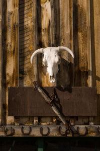 Dayton, near Sheridan, Wyoming, USA by Sergio Pitamitz