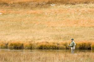 Fly Fishing, Firehole River, Yellowstone National Park, Wyoming, USA by Sergio Pitamitz