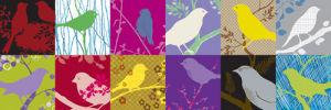 Birdland III by Alistair Forbes