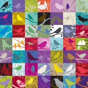 Birdland by Alistair Forbes