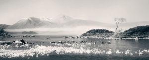 Rannoch Moor by Hugh Milsom