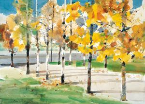 Autumn Trees by Law Wai Hin