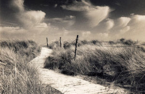Winding Path, West Wittering by Lesley Aggar