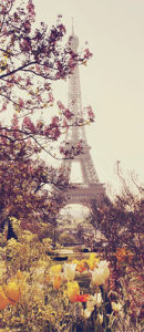 Springtime in Paris by Liz Rusby
