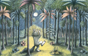 To the Land of the Wild Things by Maurice Sendak