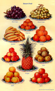 Dessert Fruit by Mrs Beeton