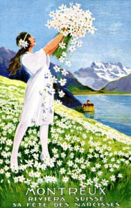 Montreux Narcissus Festival by Anonymous