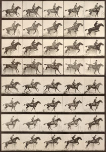 Jumping a Hurdle by Eadweard Muybridge