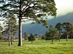 Lake District 101 by Assaf Frank