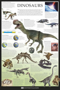 Dinosaurs by Dorling Kindersley