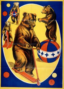 Circus Bears, 1905 by Anonymous