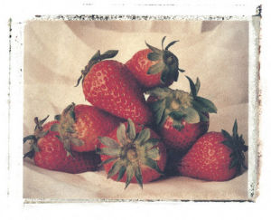 Strawberries by Deborah Schenck