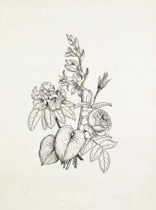 Hosta, Rhododendron, Rose by Graham Stuart Thomas