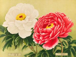 No. 29 Tama-Usagi and No. 30 Mikasayama by The Yokohama Nursery Co Ltd