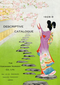 Yokohama Nursery Catalogue by The Yokohama Nursery Co Ltd