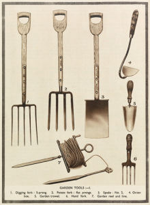 Garden Tools by Royal Horticultural Society