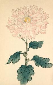 Usu Sakura by Keikwa Hasegawa