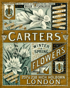 Carters' Winter and Spring Flowers by Carters' Nursery