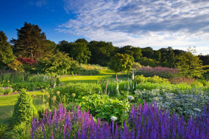 The Main Borders at Harlow Carr by Lee Beel