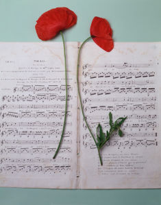 Music and Poppies by Deborah Schenck