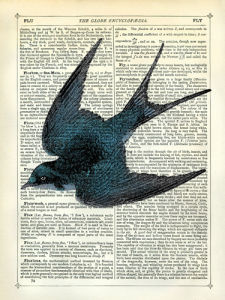 Blue Bird by Marion McConaghie