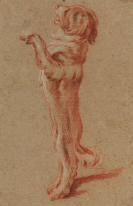 Dog standing on its hind legs by Francois Boucher