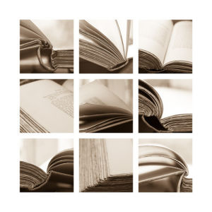 Book Sepia by Deborah Schenck