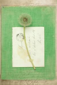 Keats by Deborah Schenck