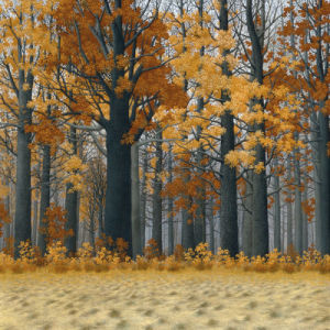Autumn Wood by Arzt