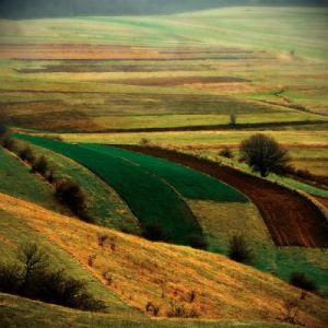 Transylvania by Crina Prida