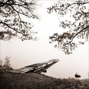 Infinity by Harold Silverman