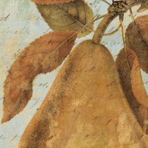 Joli Fruit II by Philippa Collection