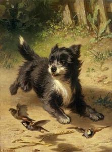 The Bird Chaser by Conradyn Cunaeus