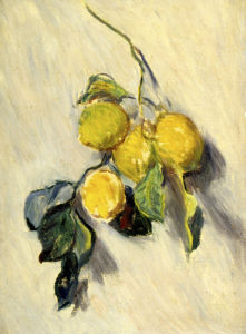 Brache de Citronnier, 1884 by Claude Monet