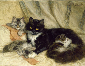 The Cat's Nap, 1900 by Henriette Ronner-Knip