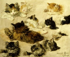 Various Studies of Cats by Henriette Ronner-Knip