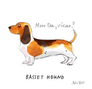 Basset Hound by Alice Tait