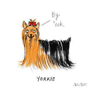 Yorkie by Alice Tait