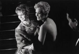 Brigitte Bardot, 1955 by Bob Hawkins