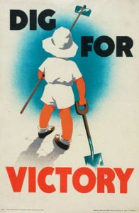 Dig for Victory by Mary Tunbridge