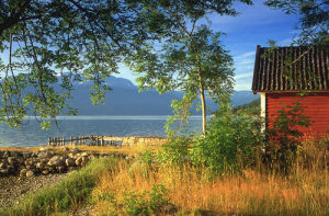 A Fjord Retreat by Kim Sayer