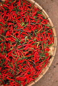 Hot Peppers by Kim Sayer